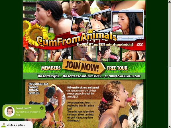 Cum From Animals Limited Promotion
