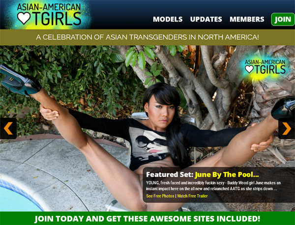 Try Asianamericantgirls.com