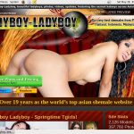 Working Ladyboy-ladyboy.com Account