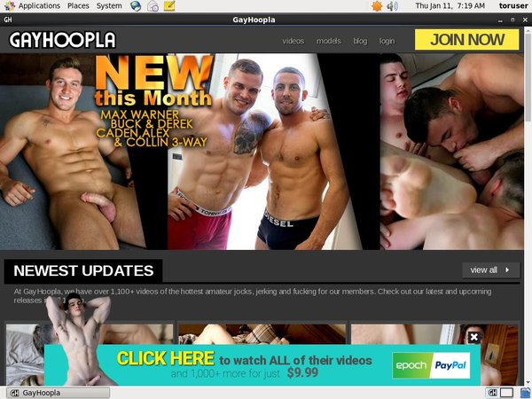 Gay Hoopla Free Scene