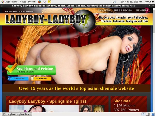 Password Ladyboyladyboy